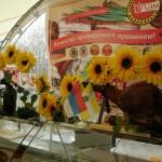 ЯРМАРКА В ОБС 21.04-27.04 026