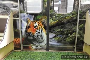 Один из составов столичного метро украсили дальневосточный леопард и амурский тигр