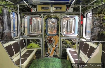 Поезд «Полосатый экспресс» запустили на Люблинской линии метро