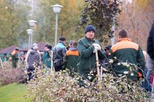 Завтра пройдут работы по озеленению трех улиц Москвы