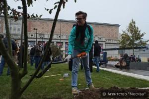 """В Москве на Триумфальной площади """"Активные граждане"""" высадили деревья"""