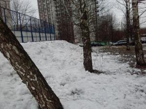 С территории Борисовского проезда в районе Орехово-Борисово Северное убрали мусор