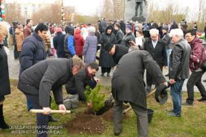 Около сотни деревьев высадят в районе Орехово-Борисово Северное