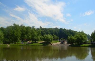 Лесопарковая зона в районе Орехово-Борисово Северное