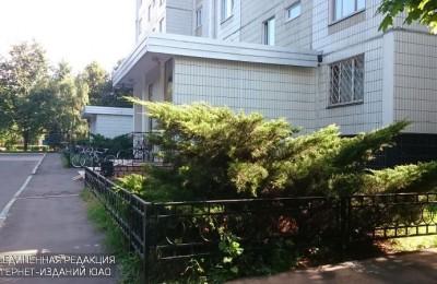 Двор в районе Орехово-Борисово Северное