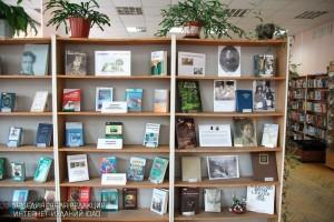 Библиотека в районе Орехово-Борисово Северное
