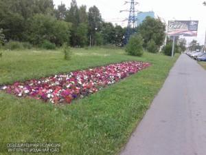 Цветник в Южном округе