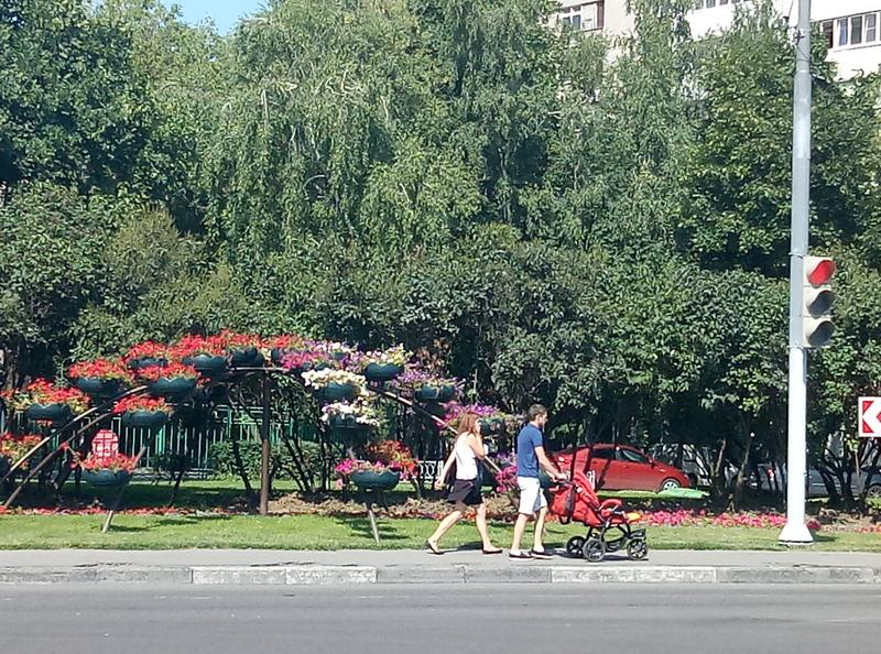 Новый игровой комплекс в районе Орехово-Борисово Северное