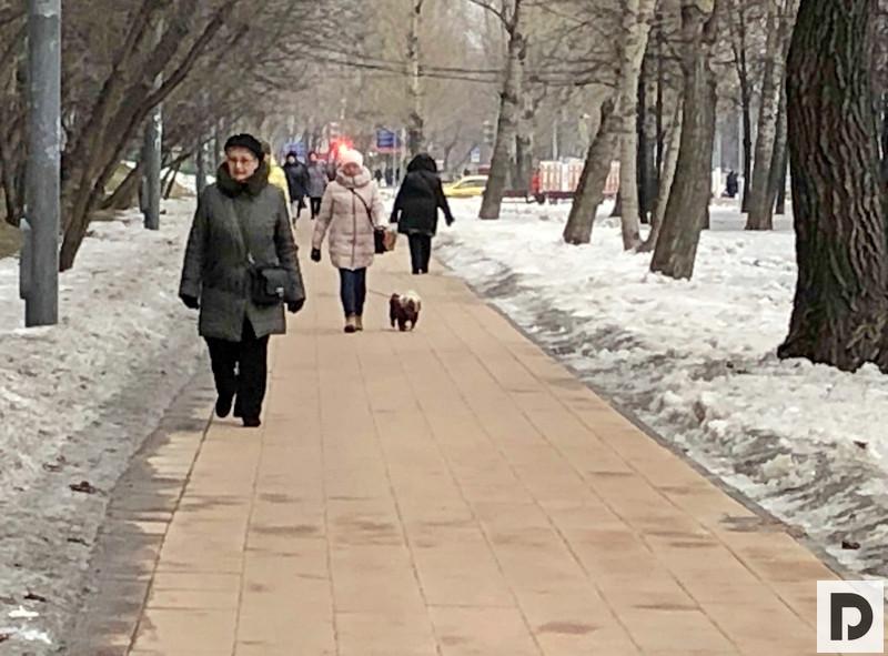 Ореховый бульвар участок благоустройства 008
