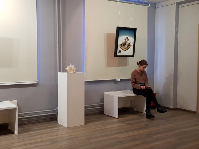 Среда обитания, выставка, галерея крыша (3)