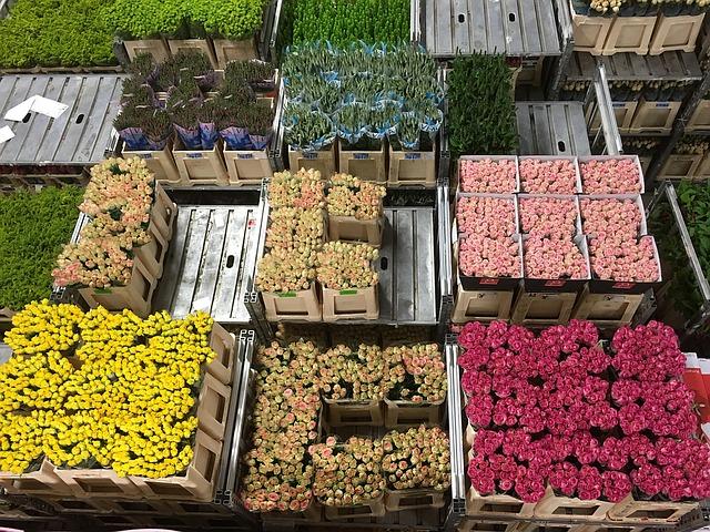 торговля цветами, пиксабай