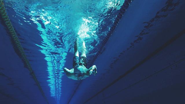 пловец, плавание, бассейн, пиксабай