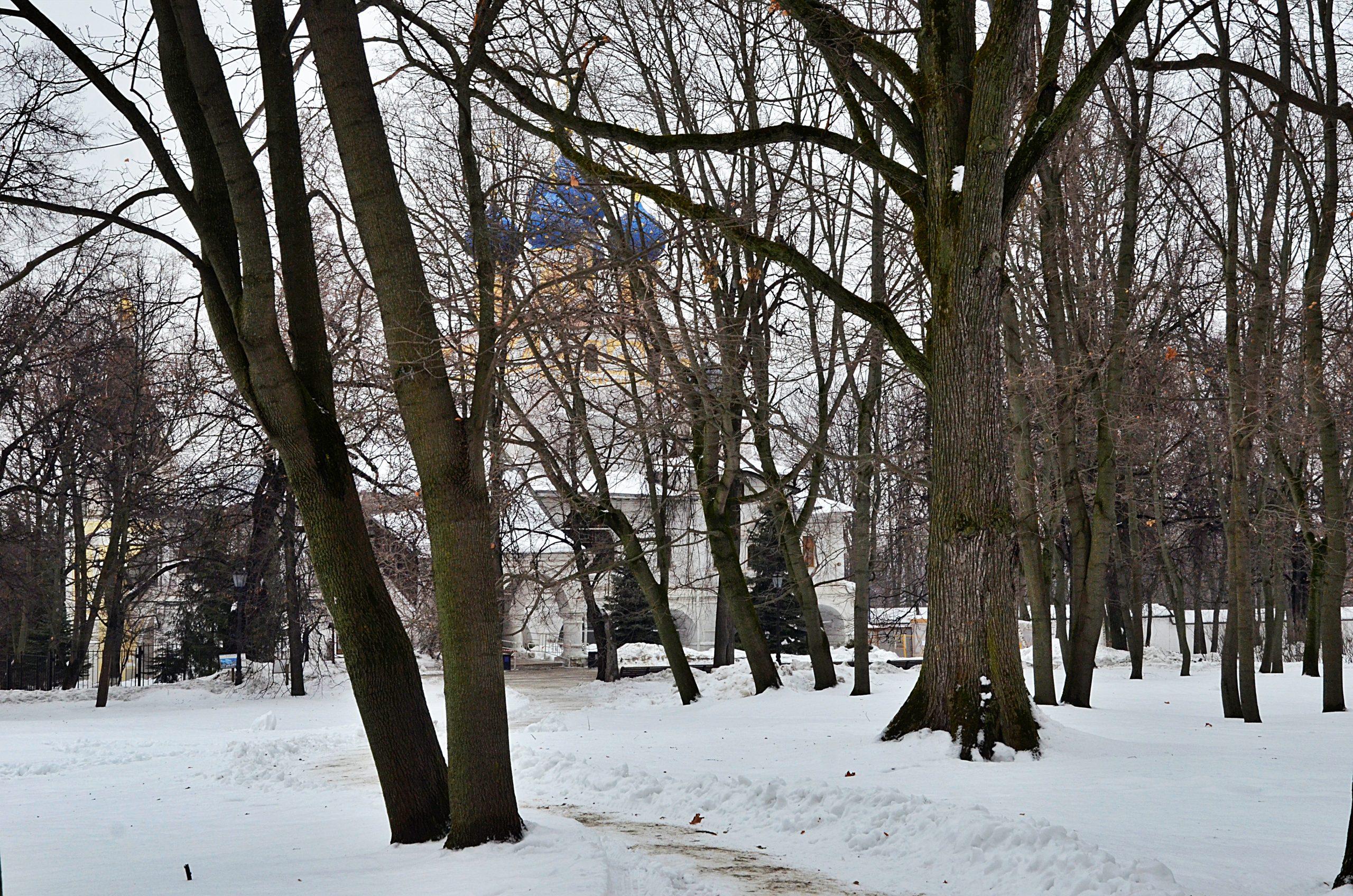 Новую фотовыставку откроют на территории зоны отдыха «Борисовские пруды». Фото: Анна Быкова